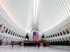 Inside the Oculus. New York
