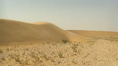 South Of Singing X (Doha Sam) Tags: summer panorama digital sand nikon raw desert stitch dunes wilderness qatar hugin d80 southerndesert samagnew smashandgrabphotocom wwwsamagnewcom maketiff manualrawprocessing