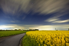 (Andreas Reinhold) Tags: road longexposure yellow night rural path fields raps bergischesland canola mettmann