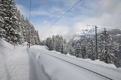 Winter Wonderland (webeagle12) Tags: mountain snow mountains alps switzerland europe swiss rail railway valley berne bernese berneseoberland oberland mannlichen murren susse nikond90 1685mm