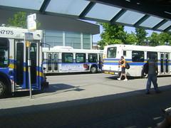 3 years of D40LF's (Juan_M._Sanchez) Tags: new bus station vancouver flyer 1996 central 1999 surrey 1998 translink d40lf cmbc transitfanning