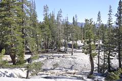 Yosemite-backpack-day4-08-11-13-042 (jmobley27606) Tags: anseladamswilderness backpacksierras backpackday4