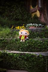 Home Sweet Home (sarahthehobbit) Tags: travel flowers newzealand cute adventure nz hobbits hobbit tolkien bilbobaggins baggins thehobbit hobbiton matamata bagend thelordoftherings theshire