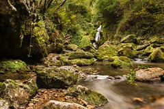 Paz (Jose Antonio Moron) Tags: naturaleza verde green nature water waterfall agua nikon long exposure asturias 28 d800 cascada covadonga 2470