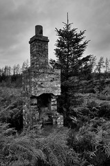 Chimney (John Mabbitt) Tags: chimney abandoned fireplace ruin northumberland trackside