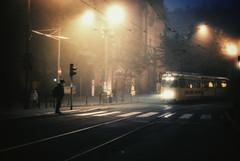 a murky greeting (ewitsoe) Tags: street morning autumn man fall fog train 35mm season 50mm dawn lights waiting mood moody glare foggy earlymorning tracks tram poland polska pedestrian transit commute flare commuter lamps crosswalk murky morn poznan moodiness nikond80 ewitsoe erikwitsoe