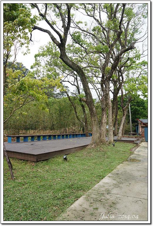 大溪茶廠 (5)