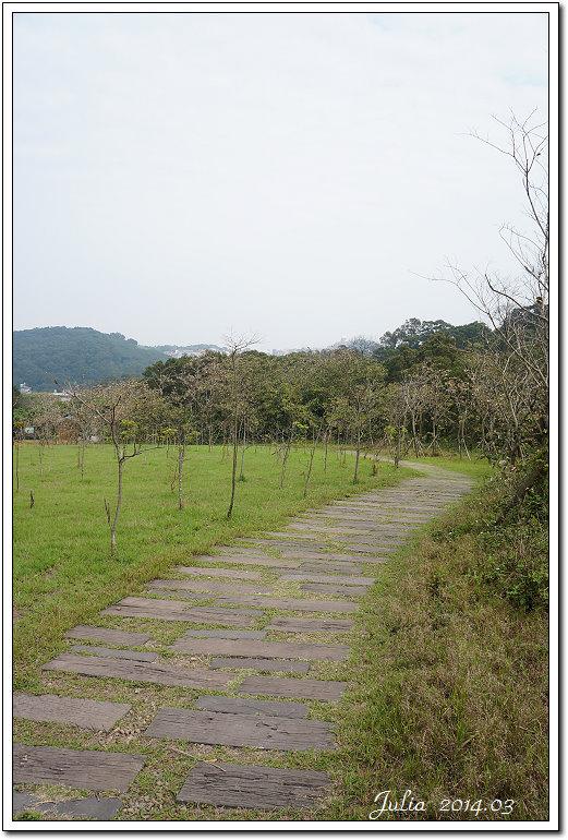 青青草原~ (25)