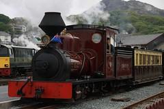 """Fiji"" at the Railway adventure weekend May 3 2014 (Martin Pritchard) Tags: david its grey george back railway highland lloyd finish service after welsh ffestiniog porthmadog overhaul"
