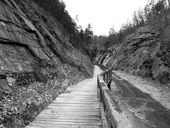 Cut through a hill (Dendroica cerulea) Tags: winter blackandwhite bw canal md maryland boardwalk gorge towpath cocanal alleganycounty fav10 chesapeakeandohiocanal cocanalnationalhistoricalpark chesapeakeandohiocanalnationalhistoricalpark