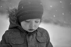 _MG_0797_1024x683 (Jerome Pouysegu) Tags: winter boy white snow black noir hiver neige flakes blanc flocons garcon