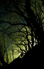 Horror (DUM4S5) Tags: deleteme5 deleteme8 deleteme3 deleteme6 deleteme9 deleteme7 night long exposure saveme3 deleteme10 aberdeen horror saveme1
