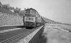 D1068 Dawlish Easter 1964 (Brit 70013 fan) Tags: engine devon western freight 1964 dawlish reliance dieselhydraulic 1stgeneration d1068