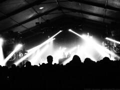 Samedi Soir @ Rock'N Solex 2016 - Bomber pour www.alter1fo (27) (alter1fo) Tags: festival rock boston club campus cheval one para n cc busy cotton claw 49 insa p bun rennes beaulieu tudiants solex tudiant beaulieux
