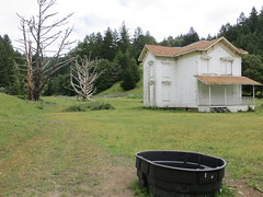 Abandoned farmhouse with dead trees (Joel Abroad) Tags: california building abandoned architecture farmhouse derelict deadtrees olema