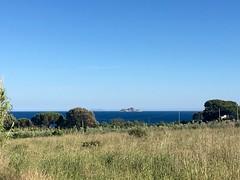 #toscanatour puntafalcon#puntafalcone #piombino #calamoresca #isoladelba #gattarossa #trekking www.toscanatour.it (Toscana Tour) Tags: trekking isoladelba piombino calamoresca puntafalcone gattarossa toscanatour puntafalcon