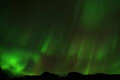 Aurora Borealis (Northern Lights) (John E G Kemp) Tags: mountain reflection night skyscape stars landscape star iceland astrophotography jupiter sland northernlights auroraborealis pleiades hyades starcluster naturetrek norurljs rfi johnkemp sonya580 19september2012 2350ut 2359gmt
