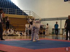 stefanou_15_5_2016_knockdown_248