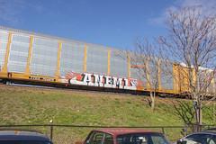Aneml Lives (NJphotograffer) Tags: railroad art graffiti rip rail lives graff freight racks autorack anemal aneml