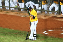 IMG_1760 () Tags: elephant brothers lion 32  cpbl           20160506