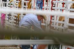 Blythewood Rodeo 2016-36 (Perry B McLeod) Tags: sc cowboys barrel bull racing bulls riding rodeo cowgirl calf saddle bronc blythewood roping ipra