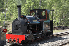 TATTOO  Kerr Stuart  0-4-2ST  w/no 2395/1917  Hollway Brothers (wheelsnwings2007/Mike) Tags: park tattoo brothers country tracks stuart staffordshire kerr wno trenches 2016 apedale hollway 042st 23951917