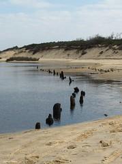 estuaire du courant d'Huchet (40) (Jeanne Valois 64) Tags: mer france sable plage reflets fleuve landes littoral estuaire ocanatlantique rservenaturelle courantdhuchet fleuvectier