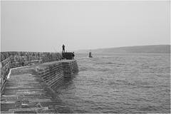 Normandie_16 *28 (KKS_51) Tags: sea mer france bassenormandie omonville sonyalpha7ii