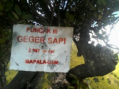 "Pengembaraan Sakuntala ank 26 Merbabu & Merapi 2014 • <a style=""font-size:0.8em;"" href=""http://www.flickr.com/photos/24767572@N00/27162908205/"" target=""_blank"">View on Flickr</a>"