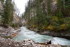 Johnston Canyon 01 (tomomega) Tags: canada canyon banff  johnstoncanyon