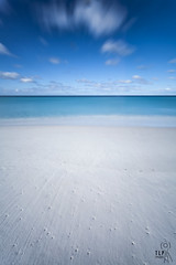 unspoilt (TLP images) Tags: ocean beach coast aqua tasmania whitesand tlpimages