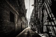 The alley (Zouhair Lhaloui) Tags: blackandwhite monochrome monochrom noireetblanc street urban chicago illinois streetally zouhairlhaloui 2016 nikond810 clouds cloudy shadows shades light windows architecture dumpsters chicagochinatown alley