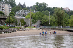 IMG_6570 (dougschneiderphoto) Tags: park usa ny newyork beach kids river spring sand rocks waterfront hudson skipping dobbsferry throwing westchestercounty