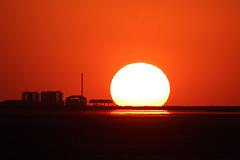 Great Rann of Kutch, Kutch, Salt Desert, Sunset-Sunrise, Dec 2012-3 (Peter R Steward) Tags: 4environment 6places greatrannofkutch gujurat habitats india kutch saltdesert sky sunsetsunrise exif:focallength=500mm camera:make=canon exif:lens=150500mm camera:model=canoneos550d exif:model=canoneos550d exif:isospeed=200 geolocation exif:aperture=80 exif:make=canon