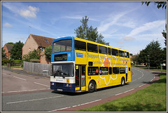 The last ever shot of 16694 along Shackleton Drive?? (Jason 87030) Tags: charity summer flower color colour bus yellow volvo estate northamptonshire july sunny petal daffodil roadside nurses northants doubledecker oly mariecurie olympian 2016 daventry 16694 r694dnh shackletondrive ashbyfields