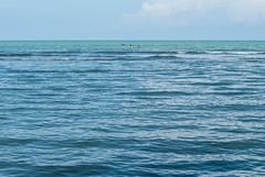 Mar de Ro Cedro (Mara Paola Aguilar) Tags: mariapaolaaguilarrojas fotos photography colombia beach playa cordoba crdoba ro cedro rio paraso natural caribe mar sea