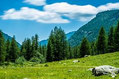 C'est bon la nature! (Mc Mas) Tags: castrino nuage paysage tende provencealpesctedazur france