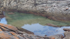 Coastal Pool (Rckr88) Tags: ocean africa travel sea nature water pool rock southafrica outdoors coast rocks south coastal pools coastline gardenroute tsitsikamma easterncape rockycoastline tsitsikammanationalpark coastalpool