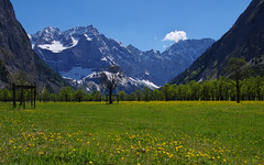 Alpine landscape (pentars) Tags: flowers trees cloud sun mountains alps green nature beautiful grass yellow landscape spring scenery rocks view pentax sigma sunny alpine 1020 k5ii