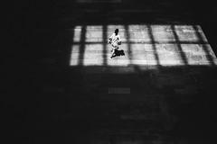 lattice (Hiro.Matsumoto) Tags: blackandwhite monochrome street minimal nikon tokyo