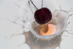 169/366 - Splash (Ravi_Shah) Tags: canon cherry milk potd splash 70d splashphotography cy365