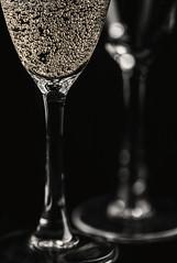 Happy Anniversary! (SkyeWeasel) Tags: wedding bokeh anniversary champagne depthoffield celebration weddinganniversary silverweddinganniversary