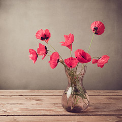 Poppies in vase over vintage background (noor.khan.alam) Tags: wood red wild summer wallpaper stilllife flower nature beautiful wall composition vintage poster table design israel wooden spring artistic blossom background fineart rustic retro filter card cover page poppy bloom vase backdrop bouquet brochure effect greeting arrangement tabletop