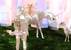 The Crystal Heart Maiden (xmoon.bunnyx) Tags: unicorn usagi taketomi altair clow usagitsukino {aii} thecrystalheartfestival