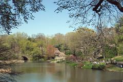 20120404_CentralParkSpring (jae.boggess) Tags: nyc new york newyork brooklyn bk spring springtime pointandshoot centralpark lake