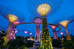 gardens by the bay (Noom HH) Tags: show park city travel reflection building gardens by architecture night marina landscape bay flyer twilight sand singapore asia cityscape nightscape business nightlight nightscene merlion