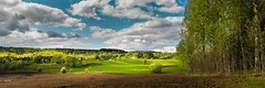 tvrdalen (andreassofus) Tags: light summer sky panorama sun sunlight green nature beautiful field grass clouds landscape sweden beautifullight naturallight panoramic vrmland landscapepanorama rjng wermland tvrdalen