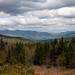 View of the White Mountains