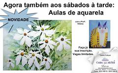 Sua chance de aprender aquarela (Dona Mincia) Tags: art brasil watercolor painting paper arte class course study aula brasiliadf aquarela casadasartes