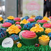 """Garden cupcakes for Next Camberley opening 4 Jul '13 • <a style=""""font-size:0.8em;"""" href=""""https://www.flickr.com/photos/68052606@N00/9212163991/"""" target=""""_blank"""">View on Flickr</a>"""
